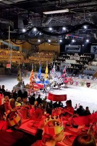 gorgeous horses and knights at Medieval Times, Lyndhurst, NJ