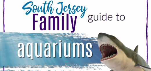 south jersey family guide to aquariums